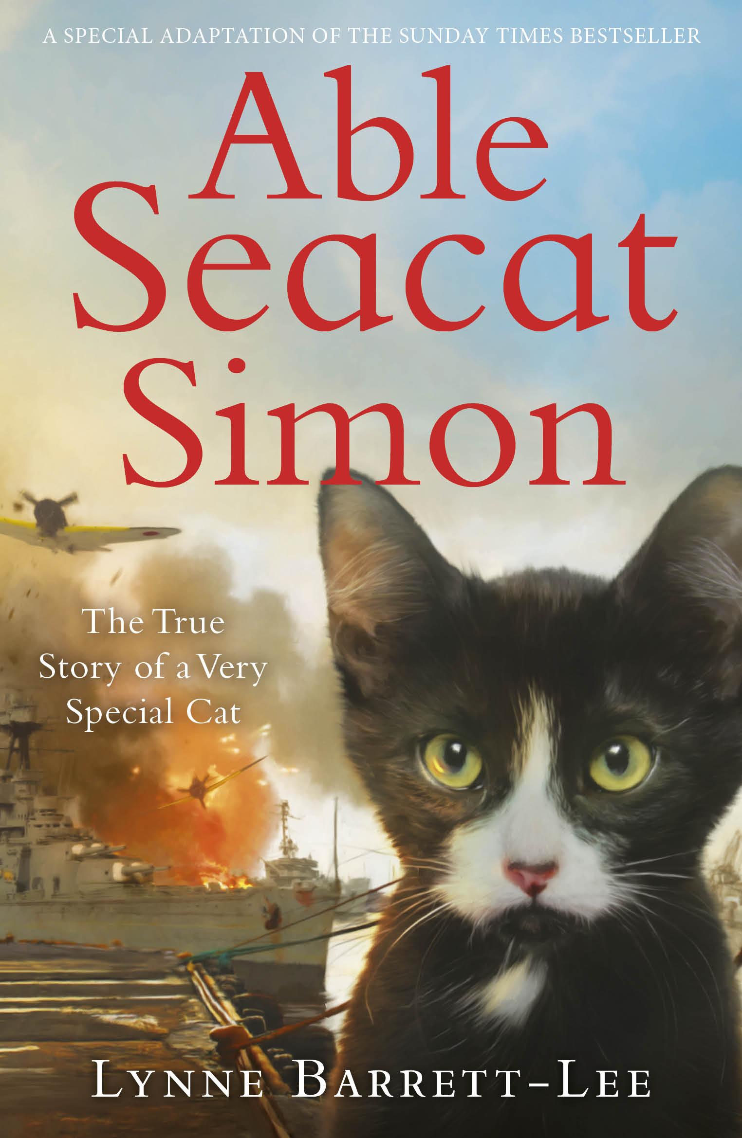 Able Seacat Simon – the true story of a very special cat